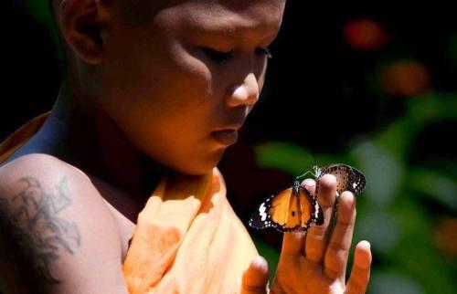 Resultado de imagem para Mestre Chagdud Rinpoche