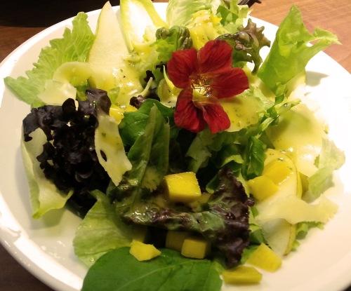 Resultado de imagem para flores e frutos