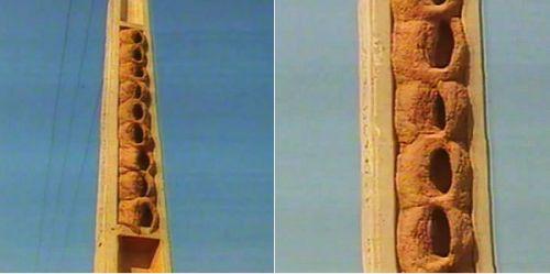 Resultado de imagem para habitat de joao de barro 3 andares