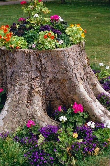 Resultado de imagem para arranjos de flores com troncos