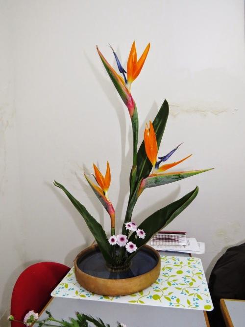 Resultado de imagem para Ikebanas