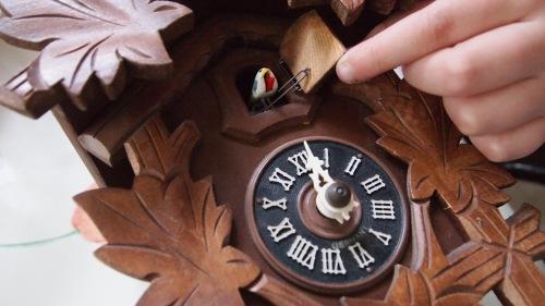 Resultado de imagem para lindo relógio cuco do mundo