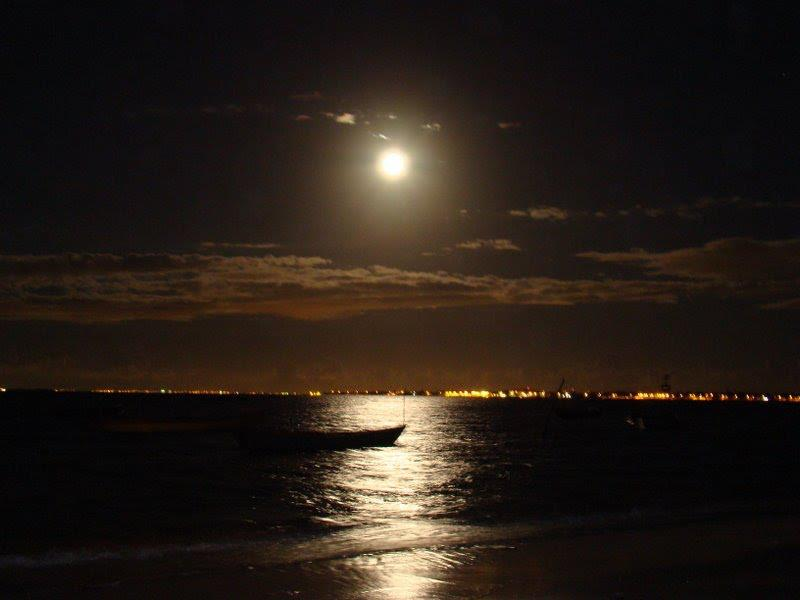 Resultado de imagem para noite linda